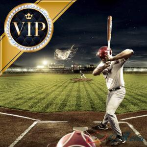 VIP билеты на бейсбол