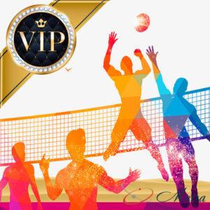 VIP билеты на волейбол