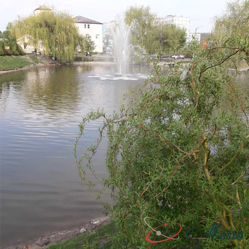 парк в Обухове